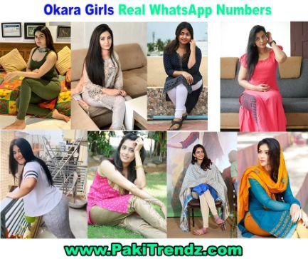 Girl online no whatsapp Find female
