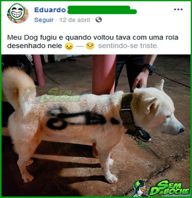 QUE MALDADE COM O DOGUINHO