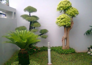 Contoh desain taman belakang rumah sempit