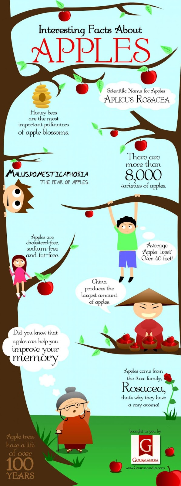 An Apple a Day Keeps Doctors Away #infographic