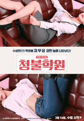 Adult Only Institute