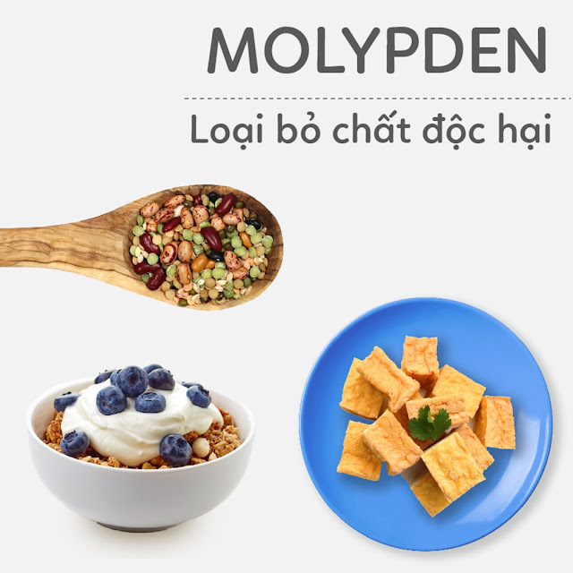 Hướng dẫn Mẹ Bầu bổ sung Molypden - Loại bỏ chất độc hại
