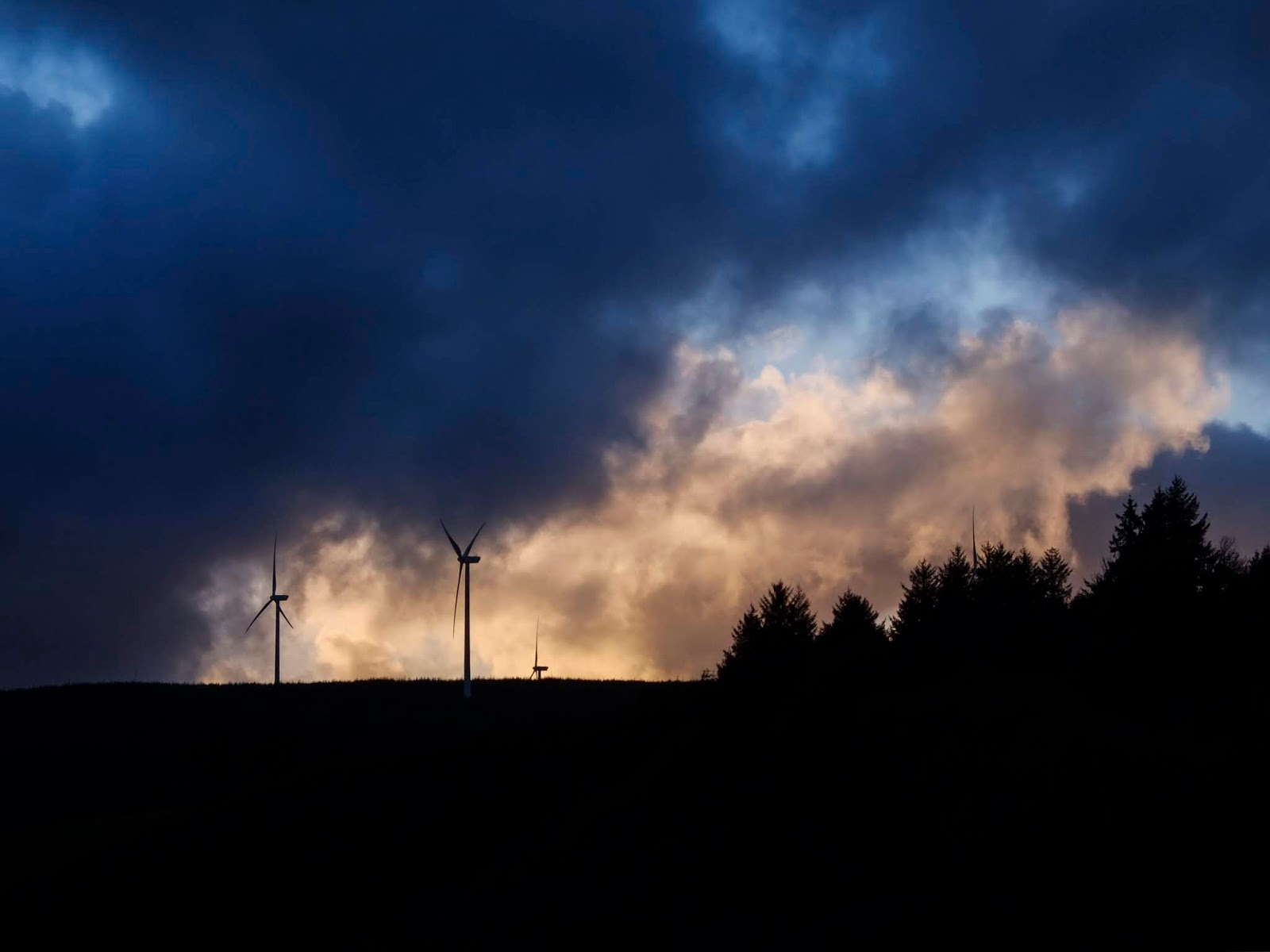 Windmills and forestry with light and dark sunset clouds overhead.