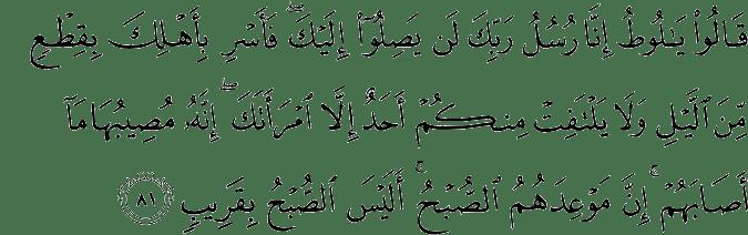 Surat Hud Ayat 81