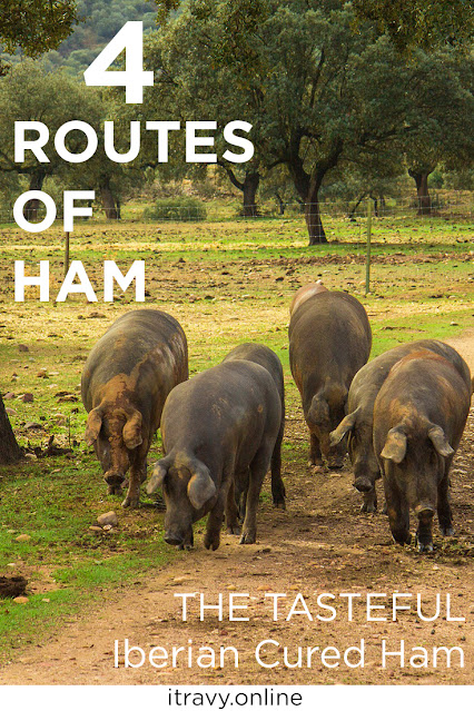 4 Routes of Iberian Cured Ham iTravy