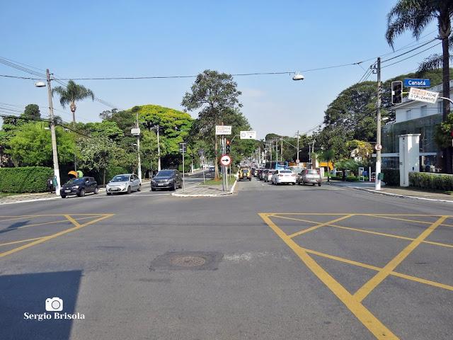 Vista de trecho da Avenida Brasil - Jardins - São Paulo