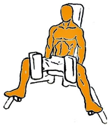 Aductor ejercicio hombre rutina pesas