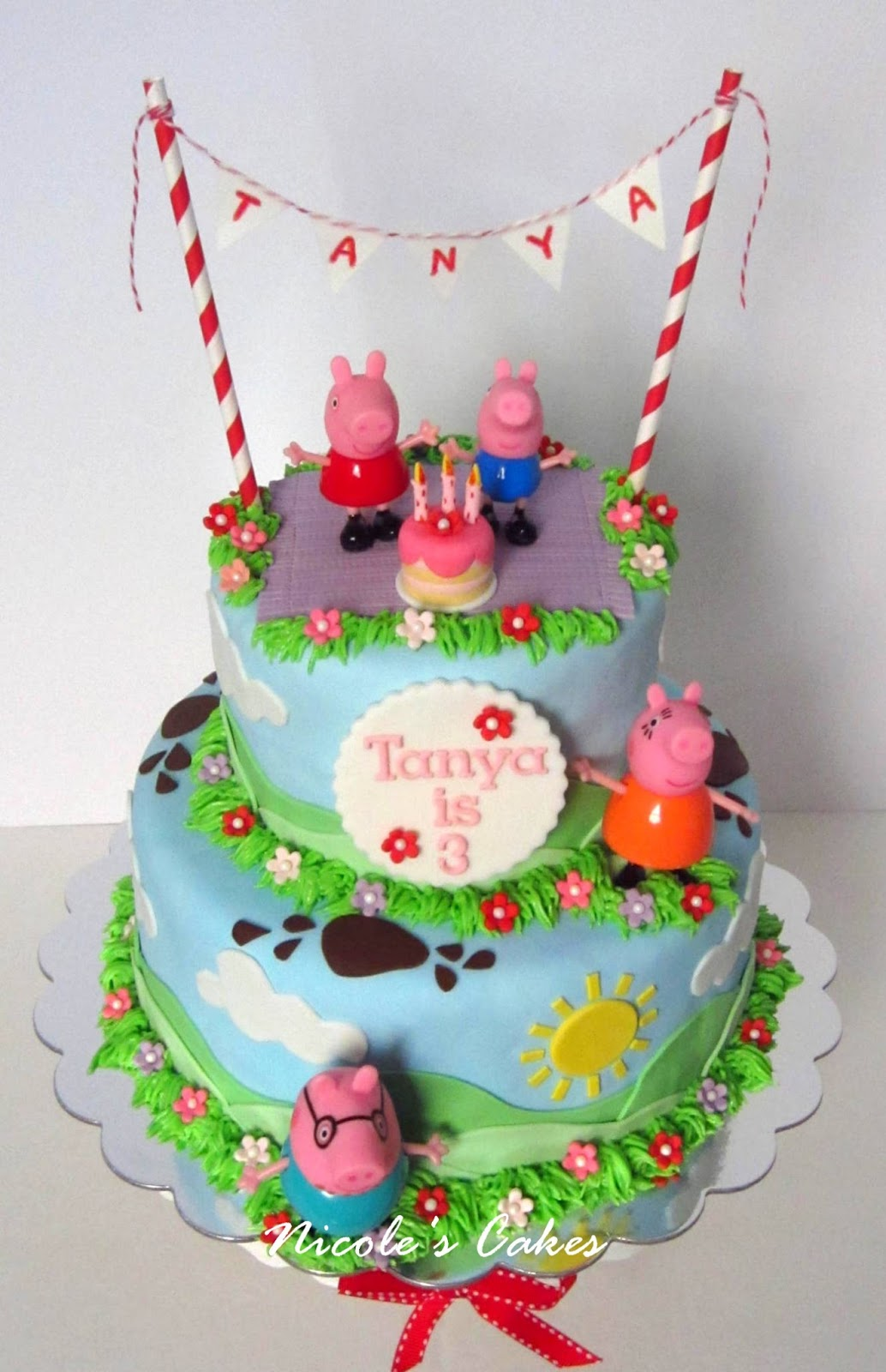 Incredible Pig Birthday Cake Gallery Birthday Cake Decoration Personalised Birthday Cards Veneteletsinfo