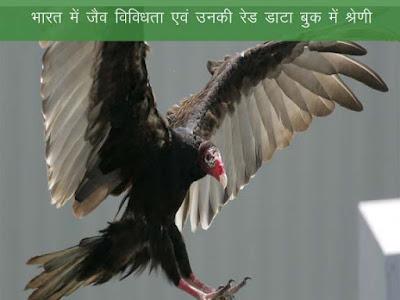 भारत में जैव विविधता एवं उनकी आईयूसीएन श्रेणी |