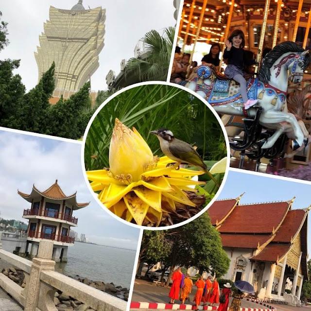 Ferias Ásia - Macau - China - Disneyland Hong Kong - Tailândia