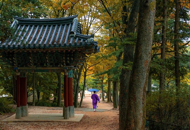منحة الحكومة الكورية 2021 | منح دراسية بدون شرط اللغة 2021