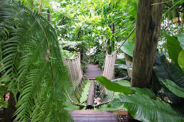 Botanic Garden Meise Plant Palace Greenhouse
