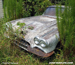 Rusty bumper sticks out from the weeds.