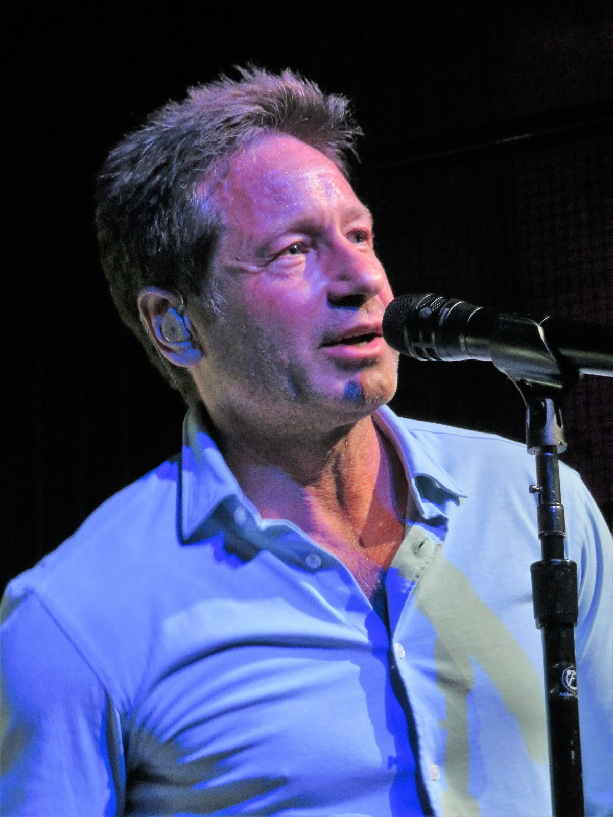 Everynight Charley's Manhattan Beat: David Duchovny at ...