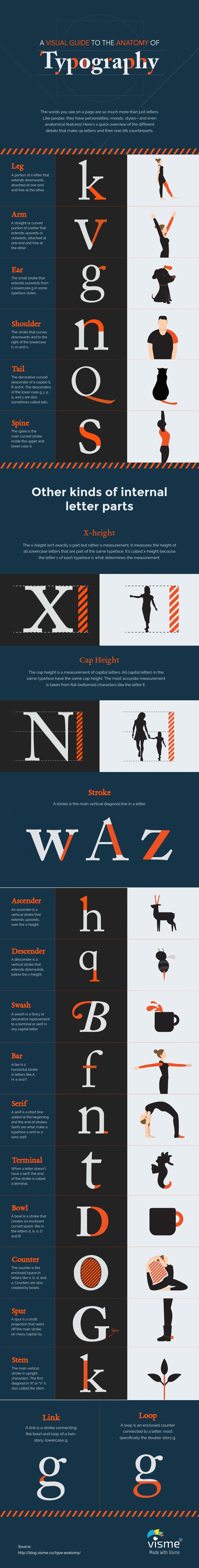 A Visual Guide to the Anatomy of Typography - #Infographic