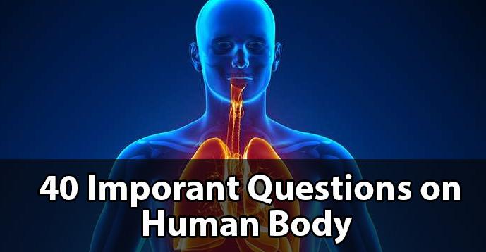 40 Important Question on Human Body - Kerala PSC GK