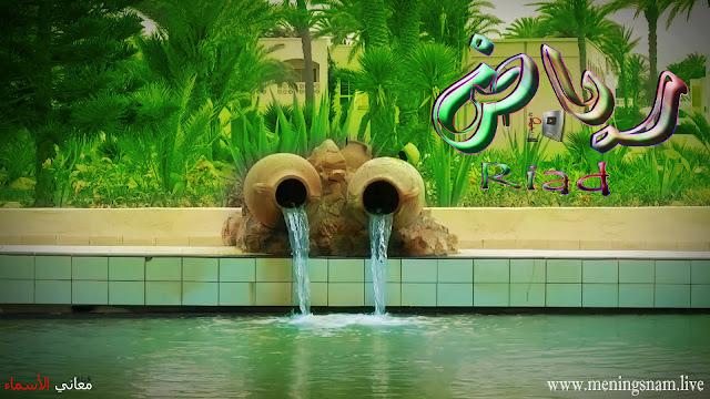 معنى اسم رياض, وصفات حامل, و حاملة هذا الاسم, Riad,