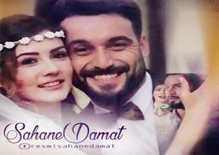 حلقات مسلسل العريس الرائع Sahane Damat تركي مترجم للعربية