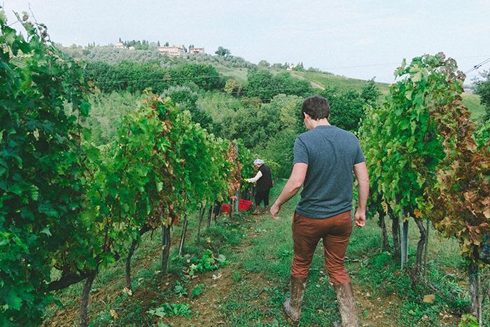 Il Baccio - Agriturismo - 12 Days in Italy