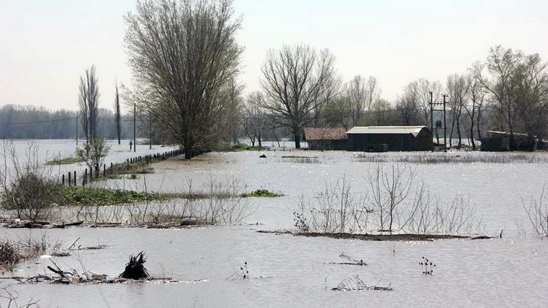 Σε απόγνωση οι αγρότες του Έβρου μετά τις πλημμύρες
