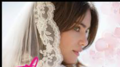 Novel The Escorted Wife lengkap full episode