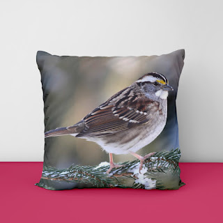 beige cushion covers
