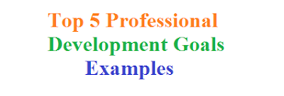 Top 5 Professional Development Goals Examples