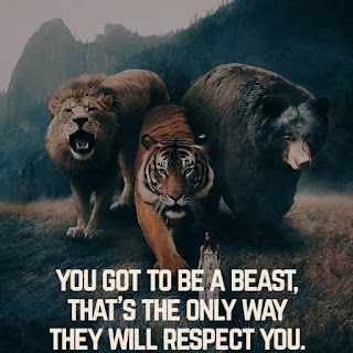 lion motivational dp for whatsapp download