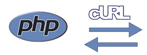 Cara Mengambil Data di Situs Lain dengan CURL PHP