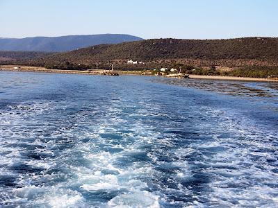25 giugno 2017 - Pesca dalla barca a Capoiale