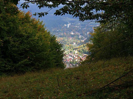 Zarastająca polana na przełęczy Burzana.