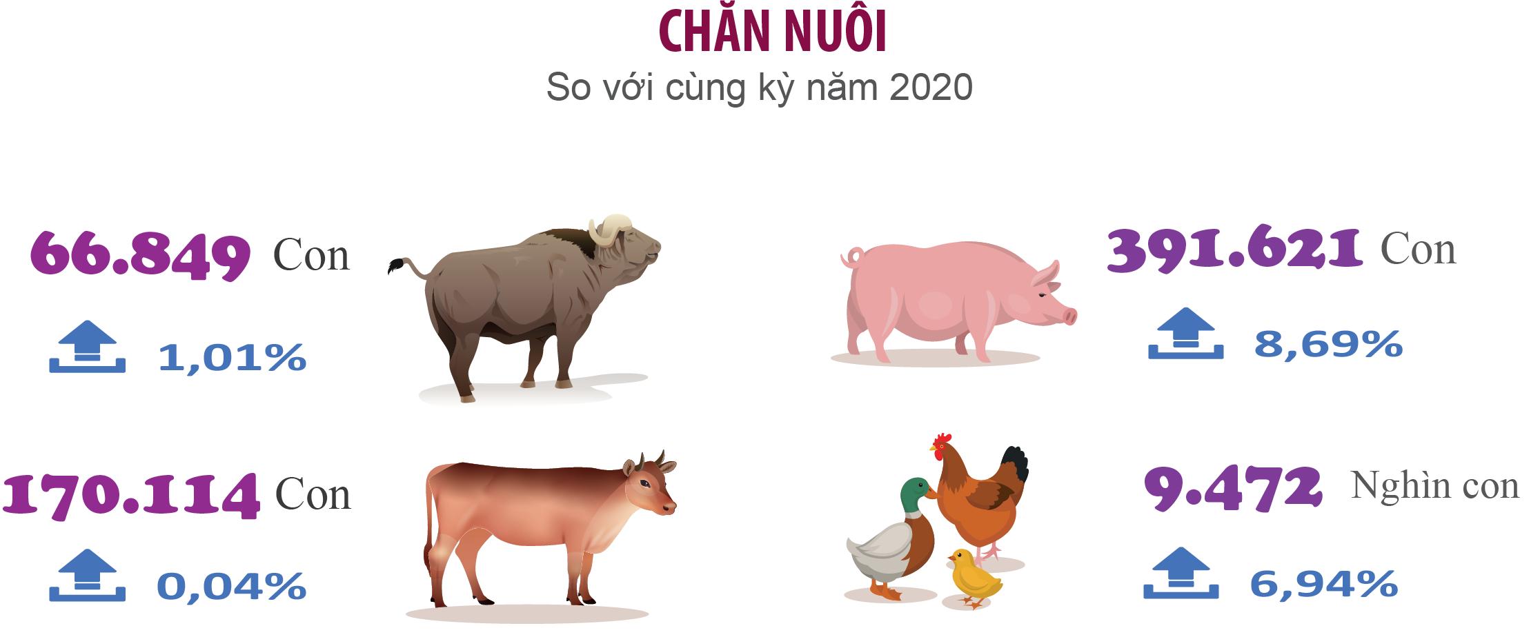 TẠI SAO  trong những năm gần đây, điều kiện phát triển chăn nuôi có nhiều thuận lợi nhưng hiệu quả lại chưa cao và chưa ổn định ?
