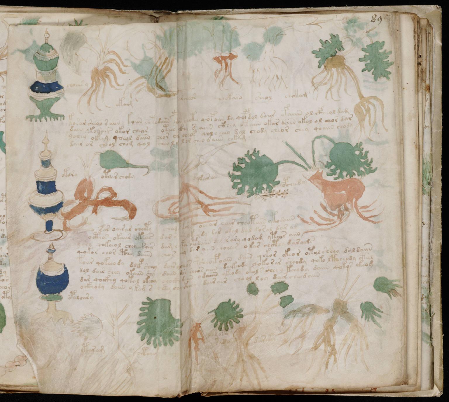 manuscrito161
