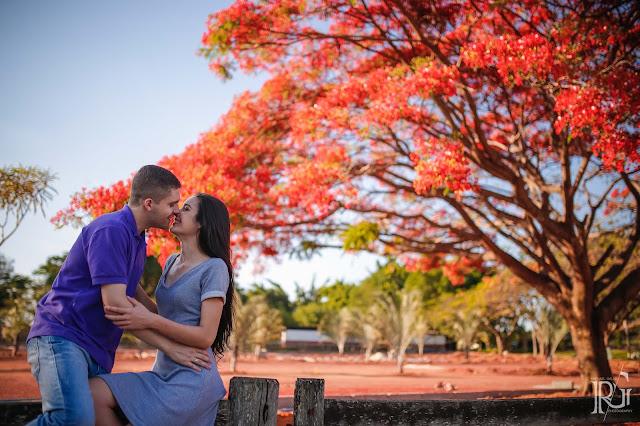 raphael gallo, ensaio romântico, prévia romântica, flamboyant, natureza, pôr do sol, haras, e-session, pré wedding, rústico, noivos