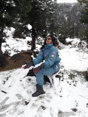 Gulaba Pass, Manali, Things to do in Manali, Himachal