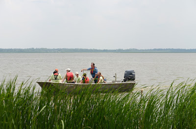 UIS scientists' research on the Illinois River floodplain published in a special research journal issue