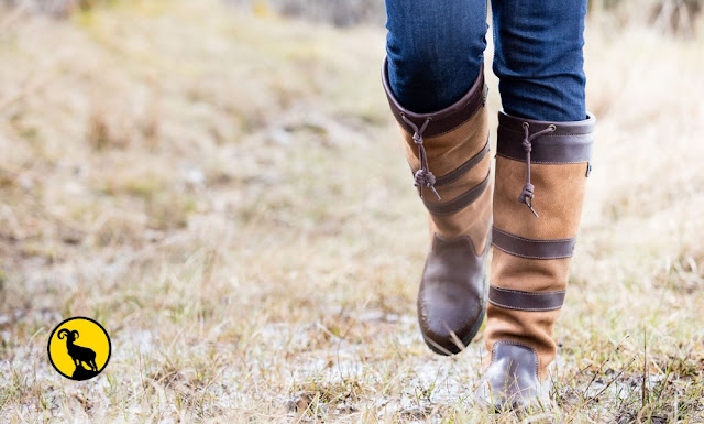 The Dubarry womens Galway boot (Walnut brown) - Complete Outdoors