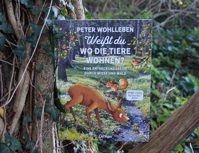 """Im Wald unterwegs: """"Weißt Du, wo die Tiere wohnen?"""" Das neue Kinderbuch von Peter Wohlleben ist erschienen und ich stelle es Euch auf Küstenkidsunterwegs ausführlich vor. Freut Euch auf ein liebevoll-informativ zusammengestelltes Kindersachbuch für alle Natur- und Tierfreunde ab 6 Jahren!"""
