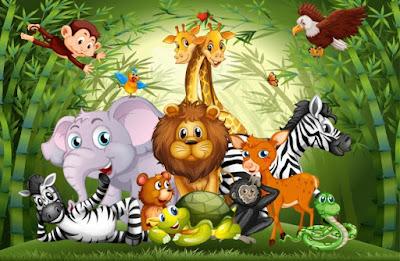 Hangi Hayvanlar Adet Görür ? Adet Olan Hayvanlar ? Regl Olan Hayvanlar Hangileridir ? Hayvanlar Adet Olur mu ?
