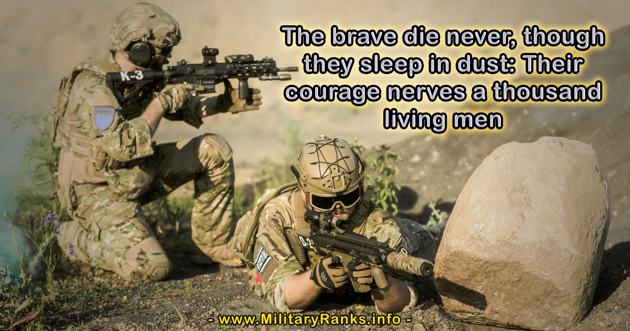 The brave die never though they sleep in dust Military Quotes