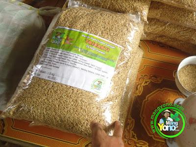 Ibu Pergiwati Pati, Jateng Pembeli Benih Padi TRISAKTI 75 HST Panen  sebanyak 5 Kg atau 1 Bungkus
