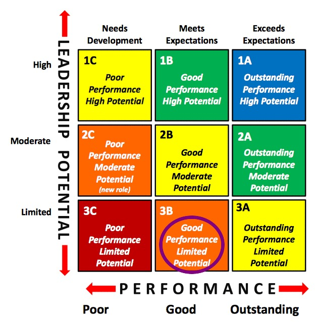 Talent Management 9 Box Grid Good Performance Limited Potential