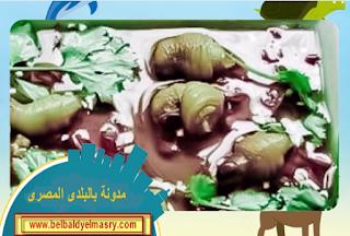 شاهد بالفيديو اغرب الحيوانات التى يتم اكلها فى بعض الدول