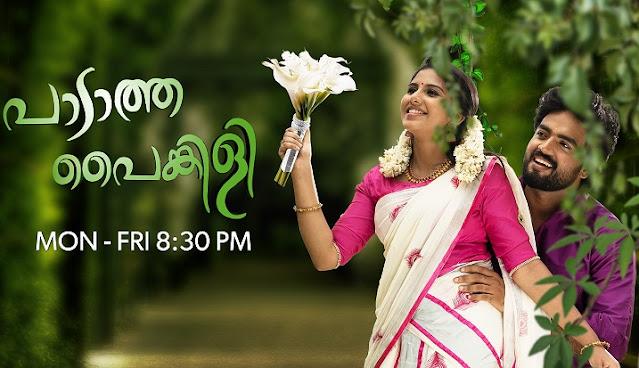 Paadatha Painkili serial