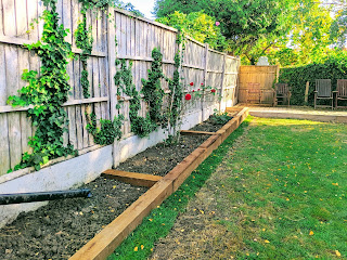 Raised beds on the sunny side of the garden