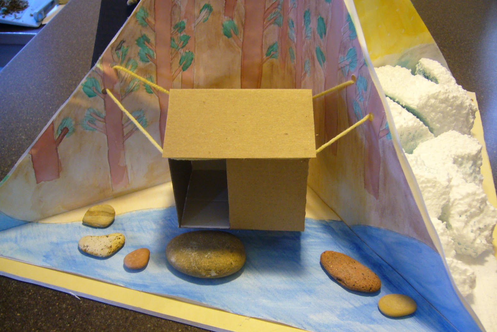 Holly S Creativity Blog School Project 4 Quadrant Diorama