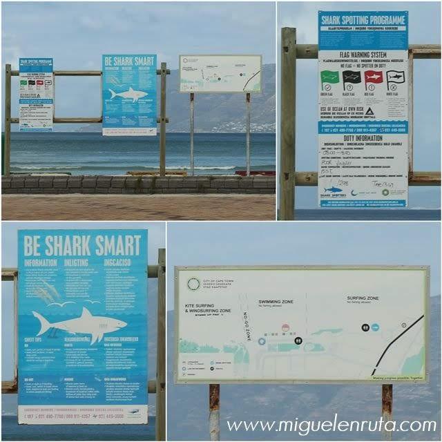 Cartel-peligro-tiburones-Muizenberg-Beach