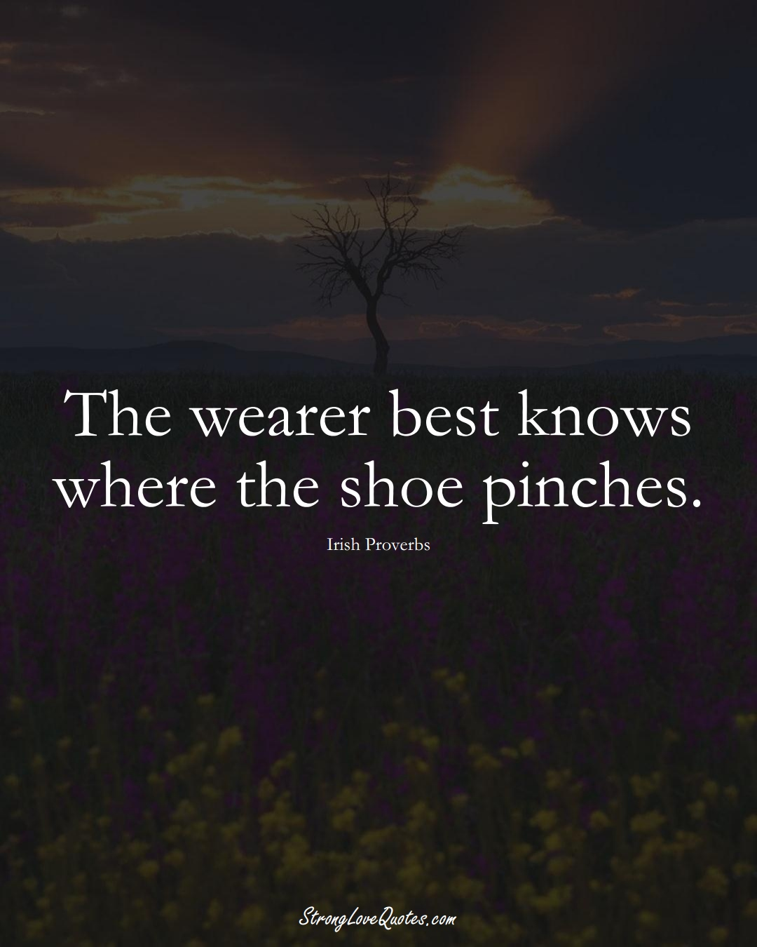The wearer best knows where the shoe pinches. (Irish Sayings);  #EuropeanSayings