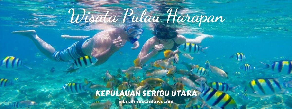 open trip dan private trip pulau harapan