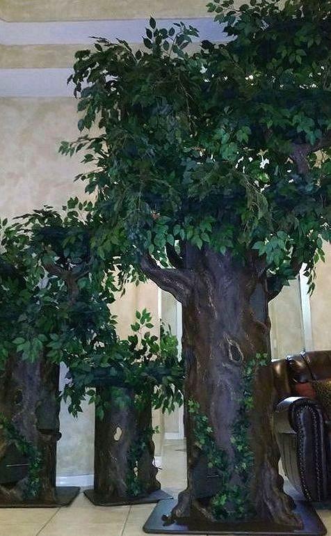Best Large Cat Trees
